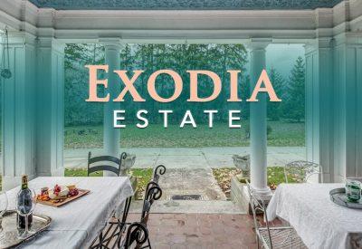 Exodia_962x650_v2